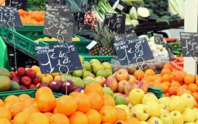 Quelle salade de fruits souhaitons-nous composer ?