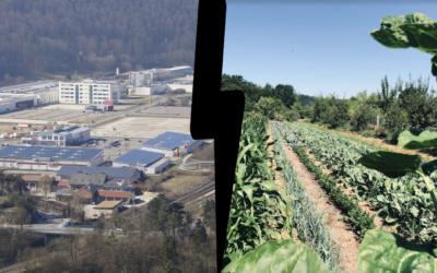 Terre agricole ou zone industrielle ?