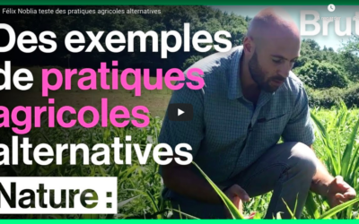Felix Noblia teste des pratiques agricoles alternatives