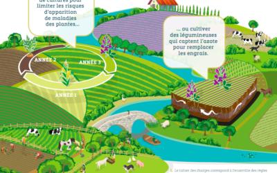 L'agroécologie, un modèle d'avenir ?
