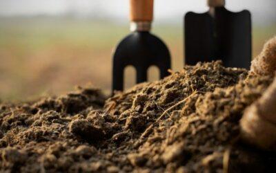 Le sol, un puit carbone
