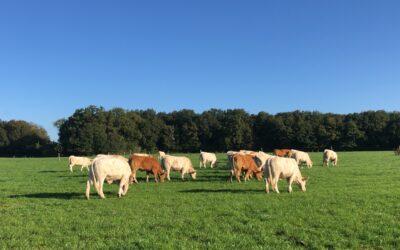 Rémunérer les agriculteurs pour la réduction de leur empreinte carbone